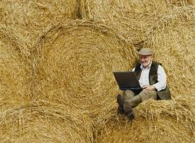 Farmer with laptop on straw bales_275_202