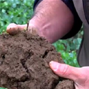 Building up soil indices